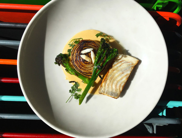 turbot-oignons-cevennes-restaurant-paris-moncoeur-belleville